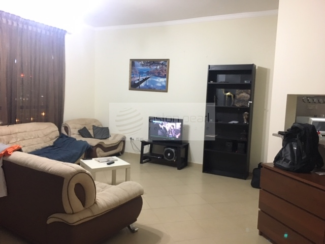 Fully Furnished 1 BR Apt  Close To Metro