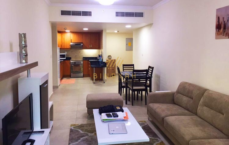 Amazing and  fully furnished 1 bedroom apartment