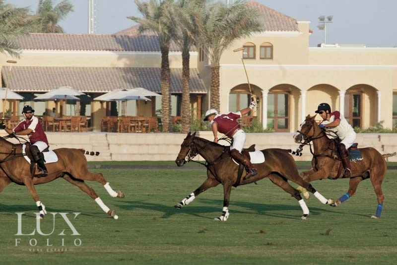 Camelia, Arabian Ranches 2, Dubai image 8